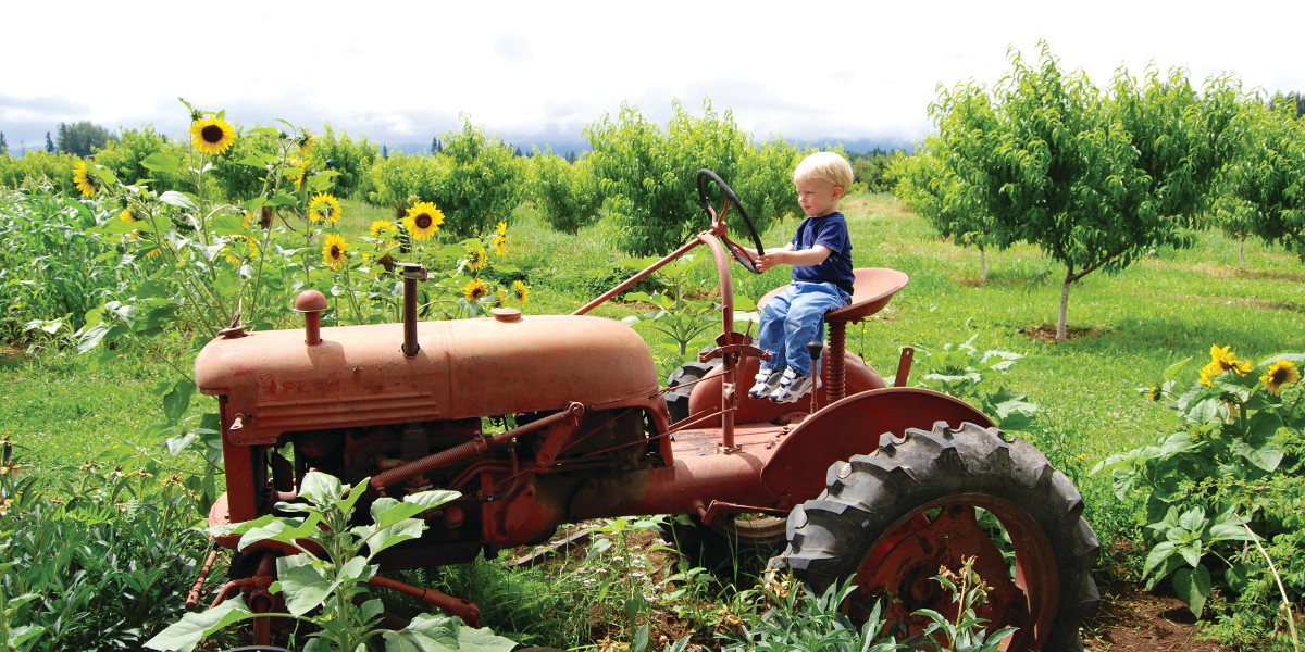 Boy_Tractor_Large - 1200x600