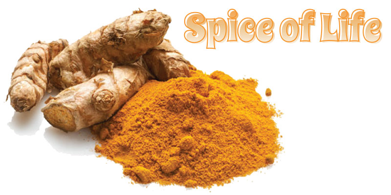spiceoflife_splash_0718