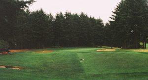 Golf-Toledo-Par-Sports-Spring