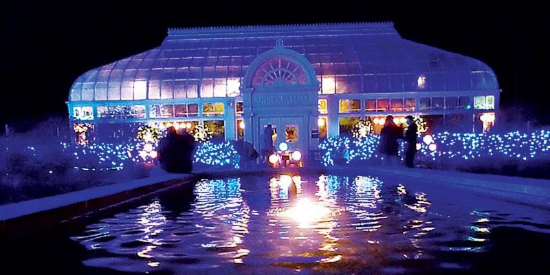 Toledo Zoo Christmas 2021 Dates Holiday Fun Mliving News