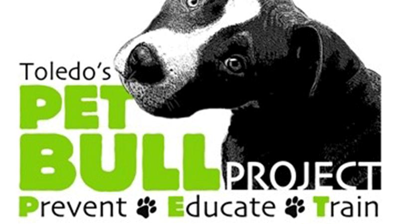 pet-bull-project