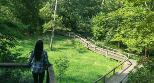 Wildwood Metropark