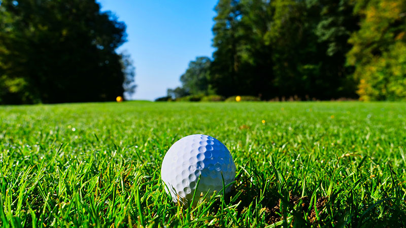 City-Golf-Courses-Reopen